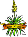 States-NM_NewMexicoYucca.jpg